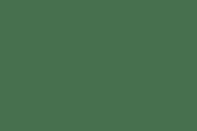 Topflite Wild Bird Energy Cake Berry 300g